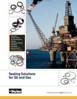 pdf 06 Oil and Gas - Parker Solutions image